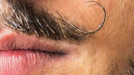 Những bí mật về ria mép ở nam giới